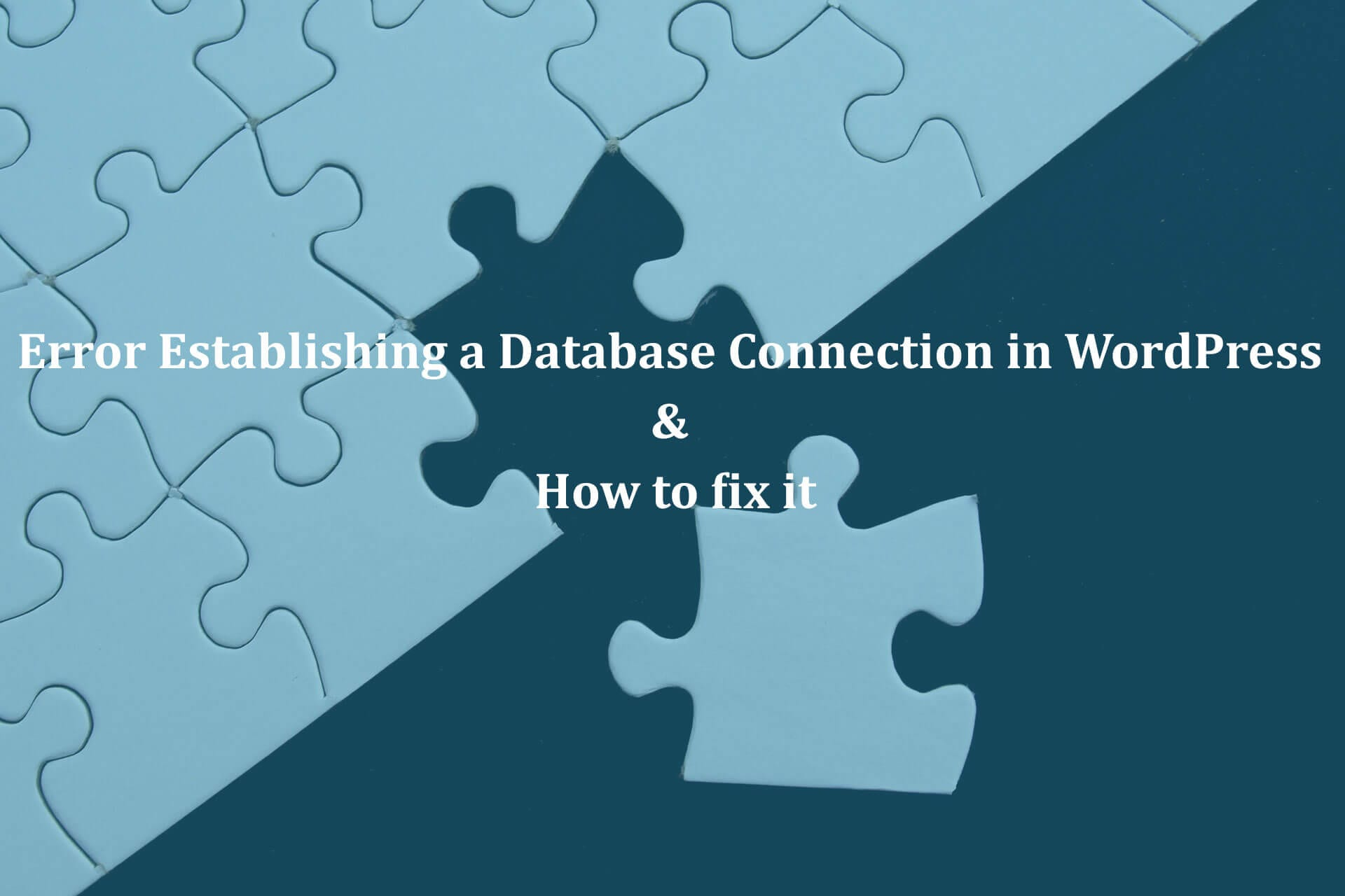 Error-Establishing-a-Database-Connection-in-WordPress-How-to-fix-it